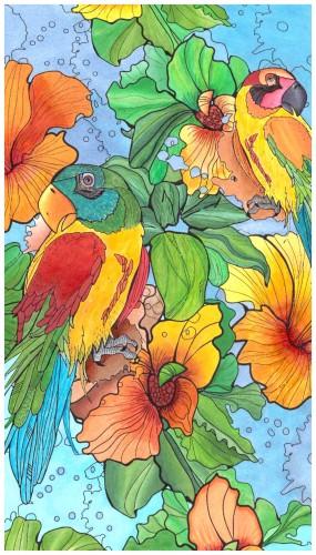 animals/coloring-birds/